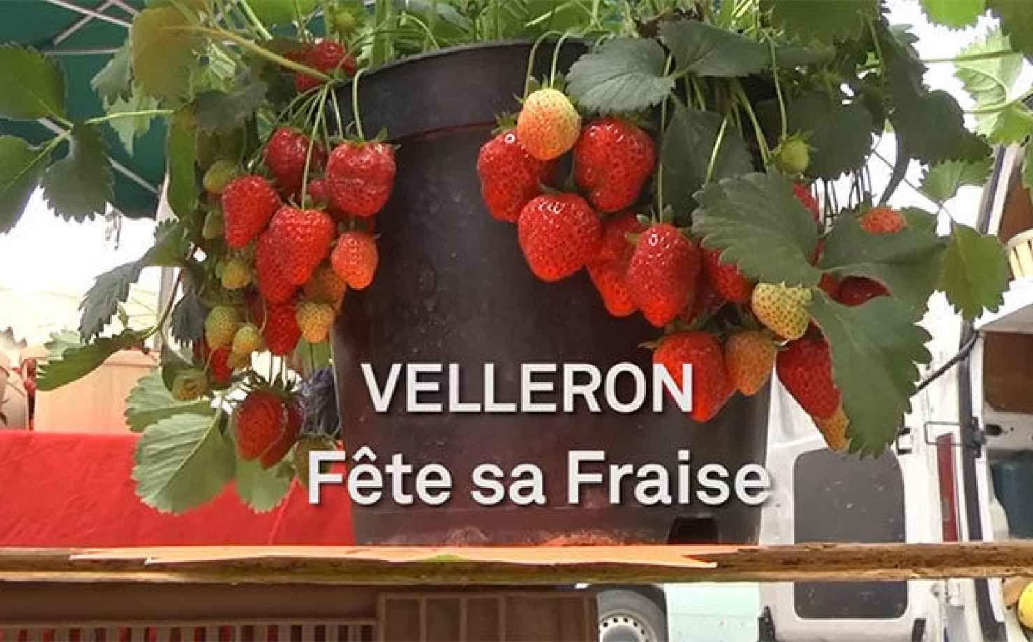 La fête de la fraise